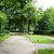 luxuriante · vert · belle · parc · jardin · soleil - photo stock © ruzanna