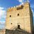 lovag · kék · szín · páncél · középkori · terv - stock fotó © ruzanna