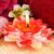 toalhas · sabão · vela · flores · flor · fogo - foto stock © ruzanna