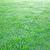 неограниченный · области · небе · весны · природы · фон - Сток-фото © ruzanna