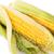 mısır · taze · iş · bitki · beyaz · tarım - stok fotoğraf © ruzanna