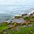 espuma · água · do · mar · turquesa · verde · mar · água - foto stock © ruzanna