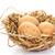goud · eieren · nest · drie · geschilderd - stockfoto © ruzanna