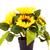 ひまわり · 花瓶 · 花束 · 黄色 · 金属 · 花 - ストックフォト © ruzanna