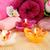 toalhas · flores · velas · fogo · rosa · grupo - foto stock © ruzanna