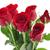 падение · воды · красный · лепесток · цветок - Сток-фото © saddako2