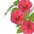 kırmızı · ebegümeci · tomurcuk · çalı · başlangıç - stok fotoğraf © saddako2