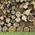 szorstki · cięcia · tarcica · tartak · drewna - zdjęcia stock © saddako2