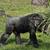 şempanze · kadın · aşağı · bakıyor · oturma · çim - stok fotoğraf © saddako2