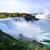 Cascate · del · Niagara · view · a · ferro · di · cavallo · lato · fiume · primo · piano - foto d'archivio © saddako2