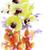 orchid flowers stock photo © saddako2