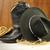preto · chapéu · de · cowboy · botas · fundo · couro · país - foto stock © saddako2