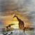 dois · girafas · aquarela · digital · pintura · pele - foto stock © saddako2