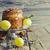 easter cake and holiday decorations stock photo © saharosa