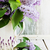 lila · jarrón · frescos · flores · frontera - foto stock © saharosa