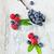 mirtilos · framboesas · saboroso · maduro · velho · colher - foto stock © saharosa