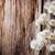 dried wild flowers stock photo © saharosa