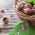 куча · орехи · группа · семени - Сток-фото © saharosa
