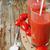 paradicsomlé · friss · paradicsomok · üveg · bögre · acél - stock fotó © saharosa