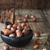 avellana · negro · tazón · cerámica · edad - foto stock © saharosa