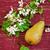 przekąska · kwitnąć · twórczej · martwa · natura · charakter · zielone - zdjęcia stock © saharosa