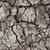 száraz · föld · repedt · agyag · föld · textúra - stock fotó © sailorr