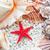 conchas · praia · starfish · espaço · areia · concha - foto stock © sailorr