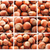 hazelnuts or filbert nuts stock photo © sailorr