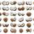 kokosnoten · collectie · vers · geïsoleerd · witte · melk - stockfoto © sailorr