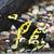dendrobates frog stock photo © sailorr