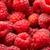 framboesas · muitos · fresco · vermelho · belo - foto stock © sailorr