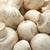 champignon · gombák · izolált · fehér · természet · egészség - stock fotó © sailorr