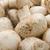 champignon · gombák · friss · izolált · fehér · étel - stock fotó © sailorr