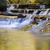 brandywine small falls emptying into pool landscape stock photo © saje