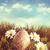 duży · easter · egg · szczęśliwy · królik · kolorowy · Wielkanoc - zdjęcia stock © sandralise