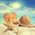 concha · praia · espaço · areia · concha · tropical - foto stock © sandralise