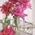 closeup of peony flowers in bottles stock photo © sandralise