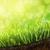 паутина · покрытый · роса · капли · луговой · Солнечный - Сток-фото © sandralise