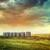 opuszczony · włókien · drewna · przechowywania · saskatchewan · Kanada - zdjęcia stock © sandralise