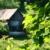 старые · сарай · окна · закрыто - Сток-фото © sandralise