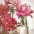 rose · vase · bois · texture · printemps · rose - photo stock © sandralise