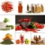 Bottles of colorful spices with grey  stock photo © Sandralise