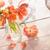 zon · shot · oranje · geneeskunde - stockfoto © sandralise