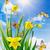 晴れた · 緑 · フィールド · てんとう虫 · 蝶 · 花 - ストックフォト © sandralise