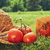 fresh picked tomatoes with garden hat on grass stock photo © sandralise