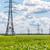 power transmission line stock photo © sapegina