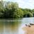 Canadá · gansos · lago · verão · borda - foto stock © sarahdoow