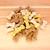 bruin · Geel · witte · hond · biscuits · gemengd - stockfoto © sarahdoow