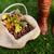 carvalho · folhas · coleção · natureza · fruto · verde - foto stock © sarahdoow