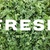 FRESH text over shredded kale leaves background stock photo © sarahdoow